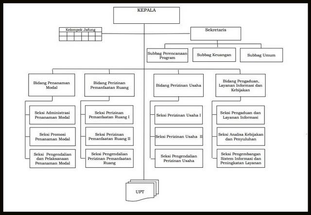 Stuktur Organisasi DPMPT